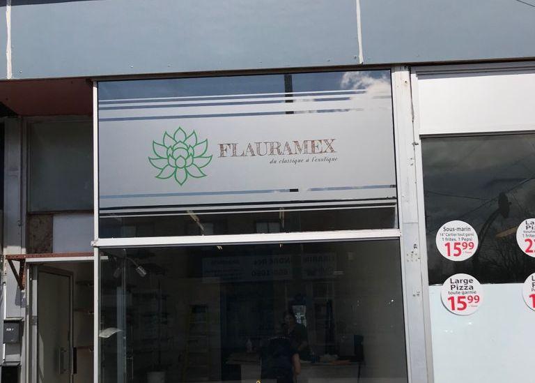 Pellicule solaire extérieure avec logo